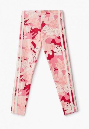 Леггинсы adidas Originals. Цвет: розовый