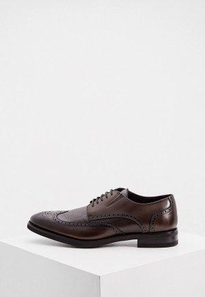 Туфли Baldinini. Цвет: коричневый