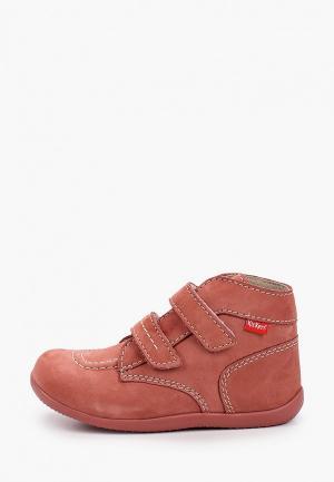 Ботинки Kickers. Цвет: розовый
