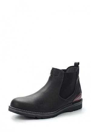 Ботинки Baerchi. Цвет: черный