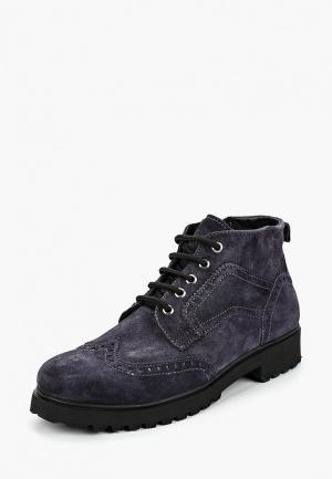 Ботинки HCS. Цвет: синий