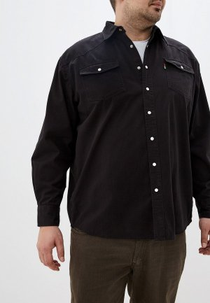 Рубашка джинсовая D555. Цвет: черный