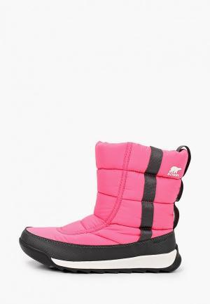Дутики Sorel. Цвет: розовый