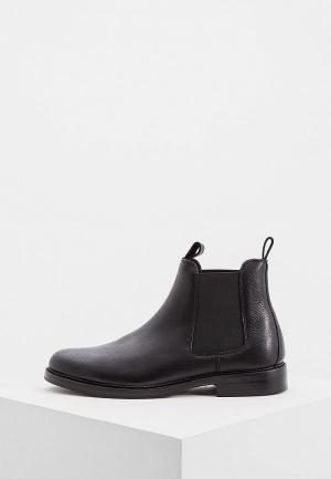 Ботинки Polo Ralph Lauren. Цвет: черный
