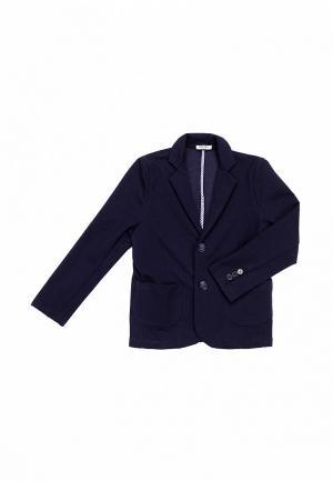 Пиджак Mimioriki. Цвет: синий