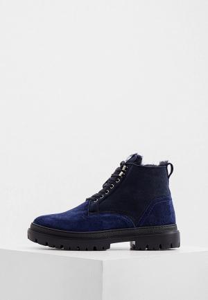 Ботинки Aldo Brue. Цвет: синий