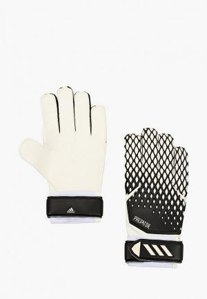 Перчатки вратарские adidas. Цвет: разноцветный