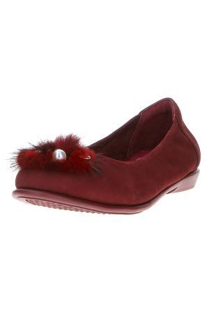Туфли MASSIMO SANTINI. Цвет: бордовый