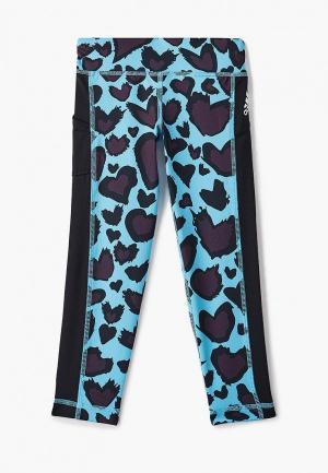 Тайтсы adidas. Цвет: голубой