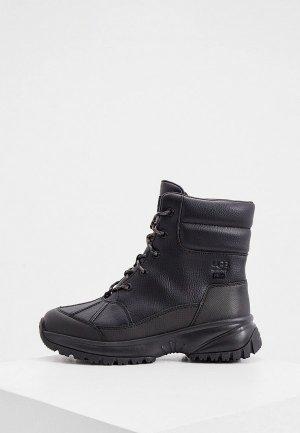 Ботинки UGG. Цвет: черный