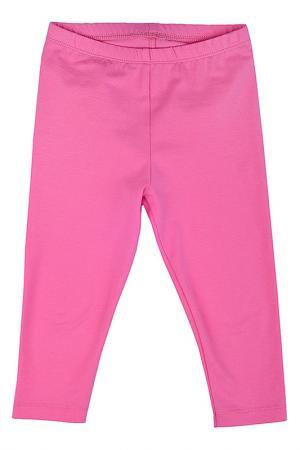 Бриджи OPTOP. Цвет: розовый